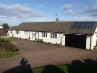 4 bed Detached Bungalow for sale in Llys Y Nant...