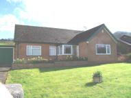 Detached Bungalow for sale in Llanfynydd, LL11