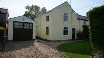 2 bedroom semi detached property in Halkyn, CH8