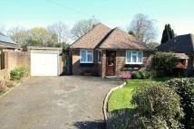 3 bed Detached Bungalow in Woods Hill Lane...