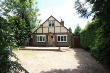 5 bedroom Detached house in Sackville Lane...