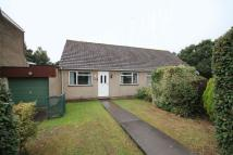 Bungalow in Mill Close...