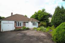 3 bedroom Bungalow to rent in Bristol Road, Frenchay...