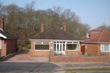 2 bedroom Detached Bungalow in Park Avenue...