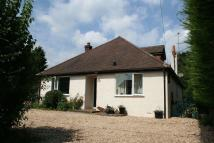 Detached Bungalow for sale in Tunbridge Crescent...