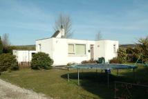 3 bed Detached Bungalow in Campbell Drive...