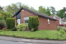 95 Beechwood Drive Detached Bungalow to rent