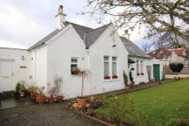 Bungalow for sale in Ardenconnel Way, Rhu...