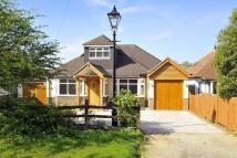 4 bedroom Detached Bungalow for sale in Cross Lane, Findon...
