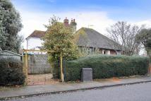 Detached Bungalow for sale in Ivydore Avenue, Worthing
