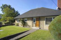 Bungalow for sale in Golwgydre Lane, Newtown...
