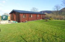 3 bed Equestrian Facility property for sale in Llandinam, Powys