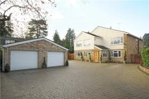 7 bed Detached property in Islet Park Drive...