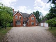 Detached house for sale in Wiltshire Road...