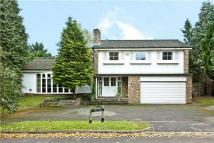 5 bed Detached property for sale in Chauntry Road...