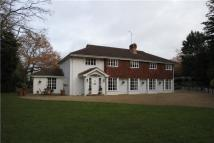 Detached house to rent in Thames Street, Sonning...