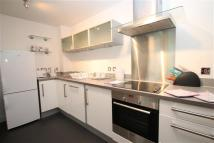 Vizion Flat to rent