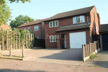 House Share in Arncliffe Drive