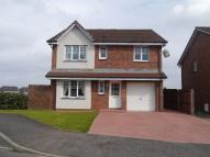 4 bedroom Detached home in Macallan Mews, Carfin...