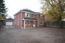 4 bedroom Detached home in Constitution Hill...