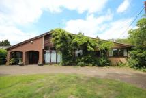 Detached Bungalow for sale in The Green, Surlingham...