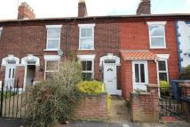 2 bed Terraced house to rent in Bertie Road, Norwich
