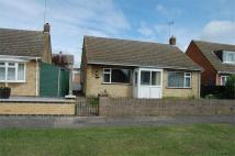 Detached Bungalow to rent in Waltham Walk, Eye...