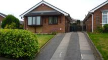 2 bedroom Detached Bungalow to rent in Kestrel Close, Knypersley