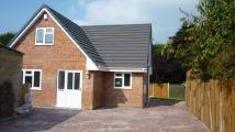 3 bedroom new house to rent in Coronation Ave...