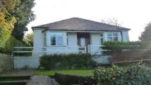 3 bedroom Detached Bungalow in Congleton Road, Biddulph