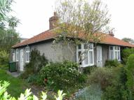 2 bed Semi-Detached Bungalow to rent in Thirsk