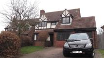 Detached property for sale in Malecoff, Godmanchester...