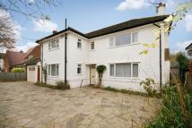 house to rent in Shelvers Way, Tadworth