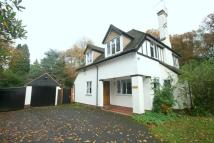 3 bed Detached house to rent in Millfield Lane...