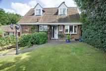 Detached Bungalow for sale in Abbots Rise...