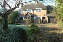 3 bedroom Detached property to rent in Beech Hill Avenue...