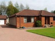 4 bed Detached Villa to rent in Formonthills Lane...
