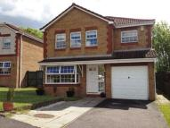 4 bed new house in Pitkevy Court...