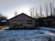 Detached Bungalow to rent in Greenwell Park, Leslie...