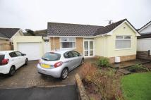 Bungalow for sale in Robin Drive, Hutton...