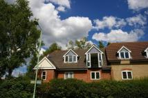2 bed Apartment in Gipping Place