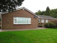 Detached Bungalow for sale in High Road, Chipstead