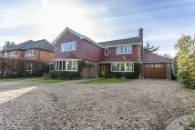 Detached house for sale in Hollymead Road, Chipstead