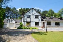 4 bed Detached home for sale in Ashley Heath