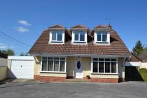 Detached Bungalow for sale in Ringwood