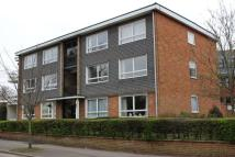 Hewgate Court Flat to rent