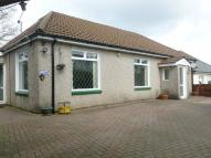 Detached Bungalow for sale in Tabor Road, Maesycwmmer...