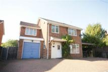 4 bed home in Forest Road, Whitehill...