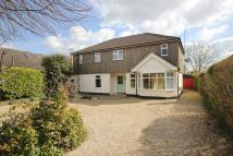 Detached house to rent in Cringleford, Norwich, NR4