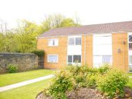 1 bed Flat to rent in Flat 3, Oakwood...